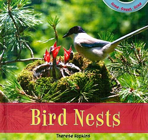 9781435826939: Bird Nests (Home Sweet Home)