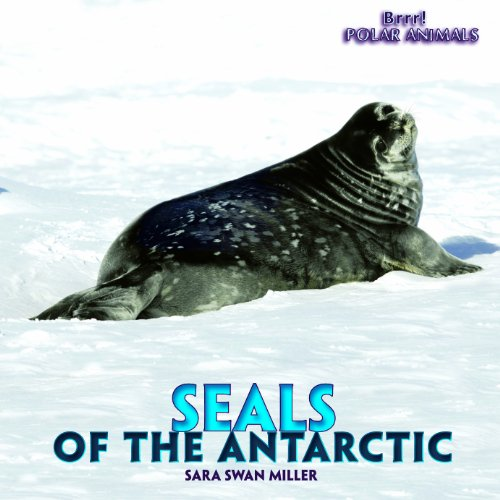 9781435827455: Seals of the Antarctic (Brrr! Polar Animals)
