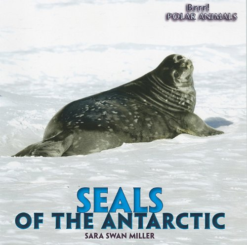 9781435831490: Seals of the Antarctic (Brrr! Polar Animals)