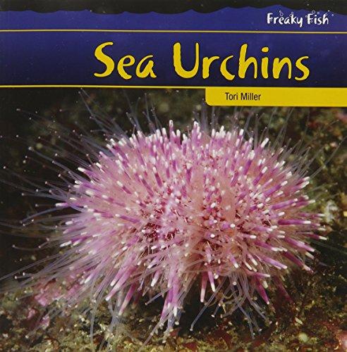 9781435831735: Sea Urchins (Freaky Fish)