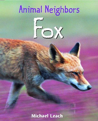 9781435849921: Fox (Animal Neighbors)