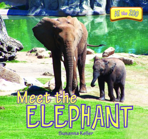 At the Zoo: Meet the Elephant