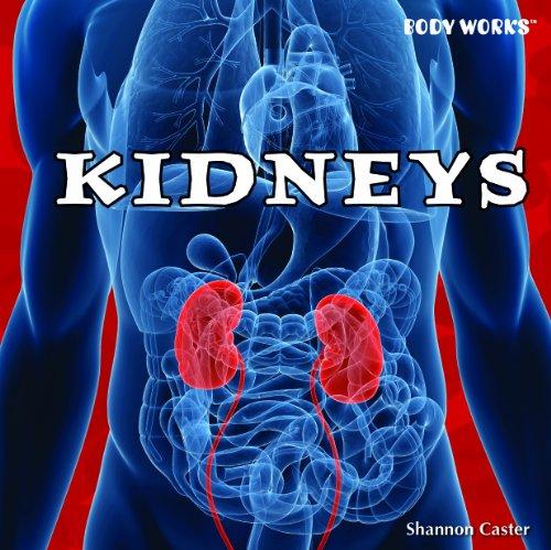 9781435893726: Kidneys (Body Works)