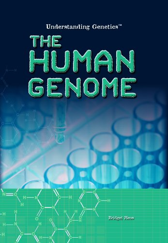 The Human Genome (Hardback): Bridget Heos
