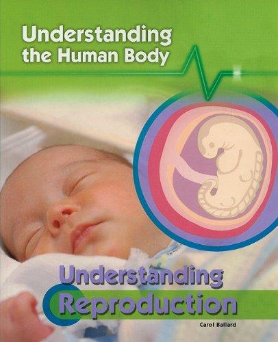 9781435896888: Understanding Reproduction (Understanding the Human Body (Paperback))