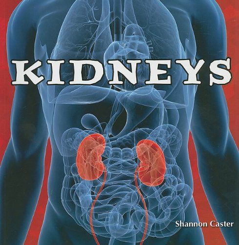 9781435898325: Kidneys (Body Works (Paper))
