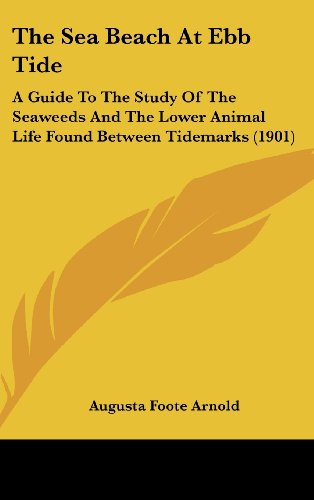 9781436619325: The Sea Beach At Ebb Tide: A Guide To The Study Of The Seaweeds And The Lower Animal Life Found Between Tidemarks (1901)