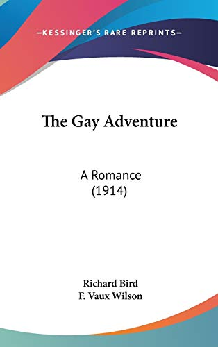9781436661256: The Gay Adventure: A Romance (1914)