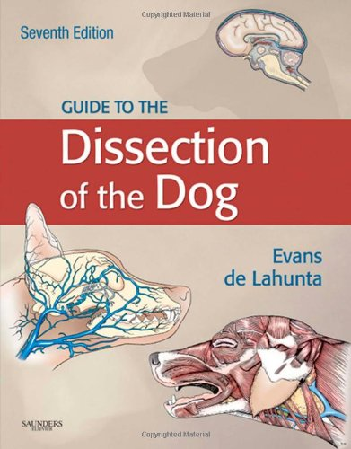 Guide to the Dissection of the Dog: Evans PhD, Howard