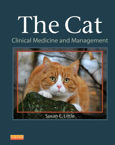 9781437706604: The Cat: Clinical Medicine and Management, 1e