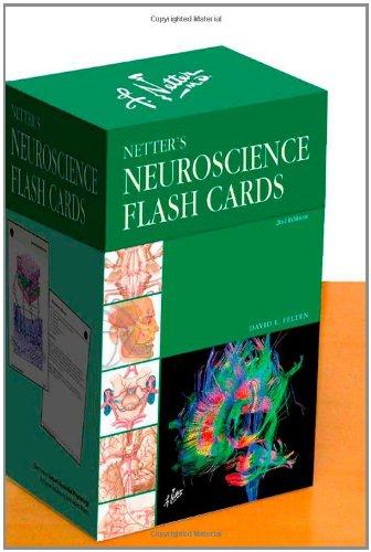 9781437709407: Netter's Neuroscience Flash Cards, 2e (Netter Basic Science)
