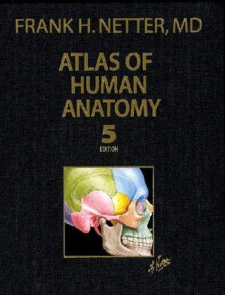Atlas of Human Anatomy, Professional Edition (5th edition) (Netter Basic Science): Netter MD, Frank...