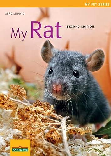 9781438000077: My Rat (My Pet Series)