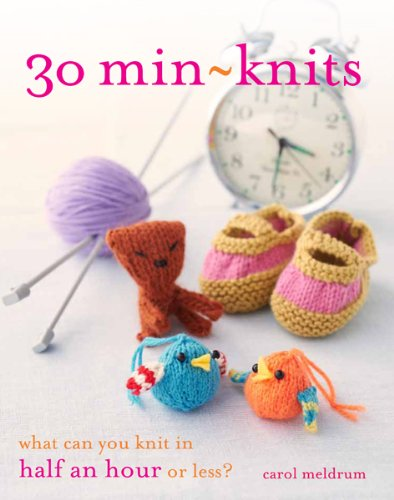 9781438001296: 30 Min-Knits: What Can You Knit in Half an Hour or Less?