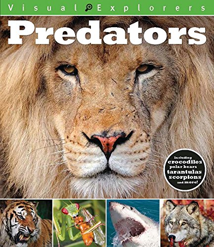 9781438005805: Predators (Visual Explorers)