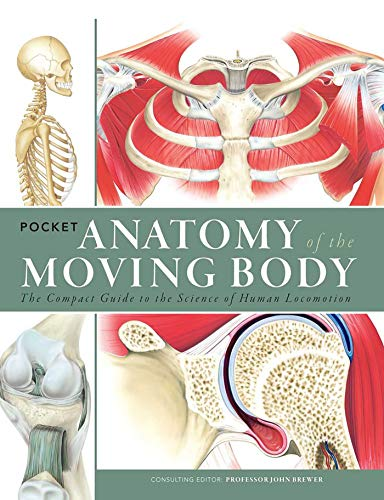 Pocket Anatomy of the Moving Body: The: Brewer, John,Perrin MSc,