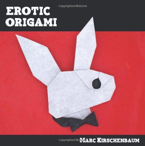 9781438218045: Erotic Origami