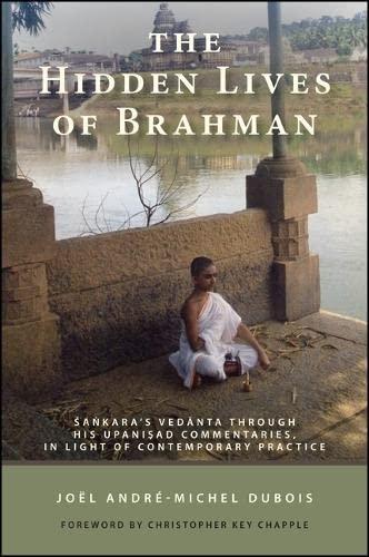 9781438448060: The Hidden Lives of Brahman: Sankara's Vedanta through His Upanisad Commentaries, in Light of Contemporary Practice (SUNY Series in Religious Studies)