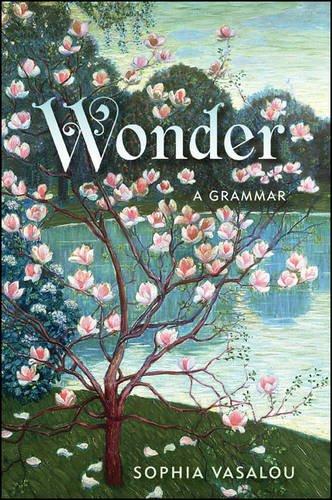 9781438455532: Wonder: A Grammar