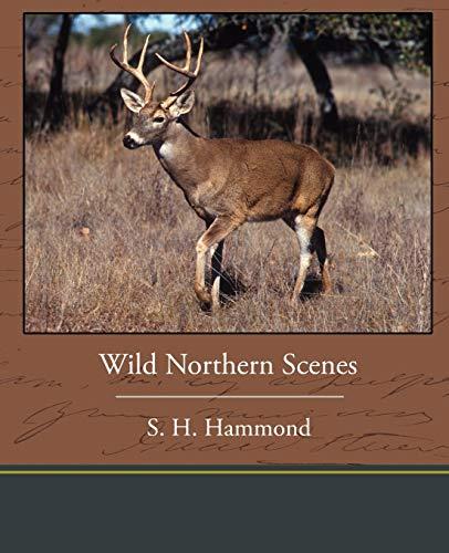 9781438535784: Wild Northern Scenes