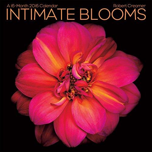 9781438840116: Intimate Blooms 2016 Calendar