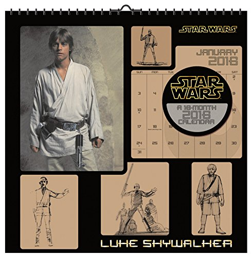 9781438841656: Star Wars Saga 2016 Art Calendar