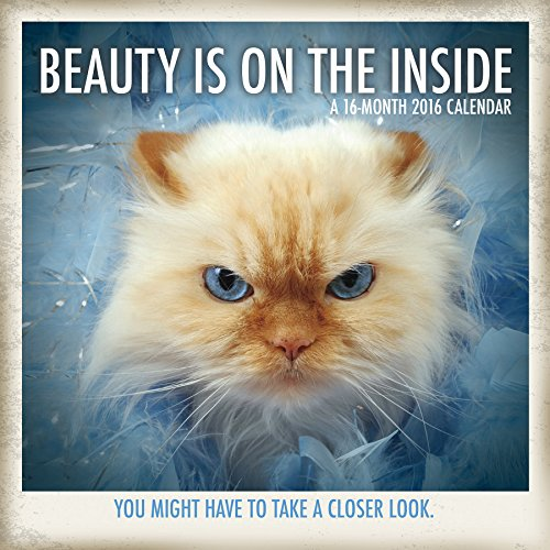 9781438842646: Beauty Is On The Inside 2016 Wall Calendar