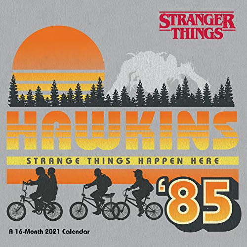 9781438874531: Stranger Things 2021 Calendar