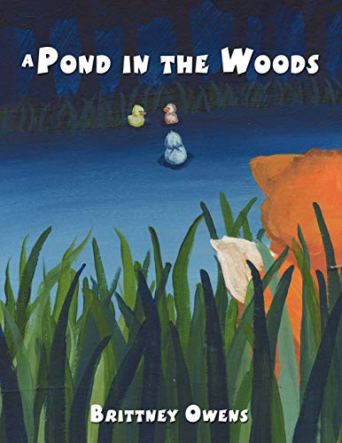 A Pond in the Woods: Brittney Owens