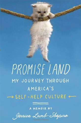 9781439100196: Promise Land: My Journey through America's Self-Help Culture