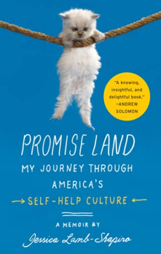 9781439100219: Promise Land: My Journey through America's Self-Help Culture