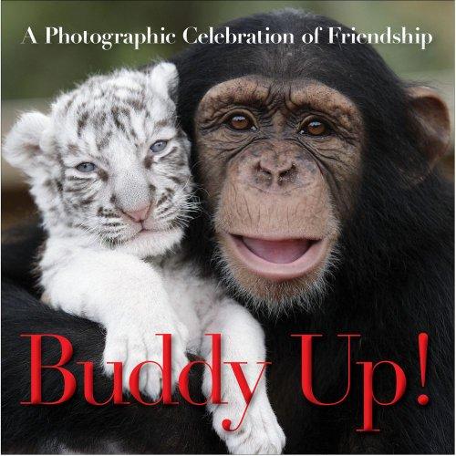 9781439173329: Buddy Up!