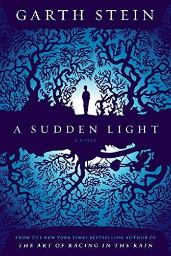 9781439187036: A Sudden Light