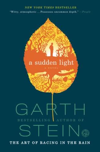 9781439187043: A Sudden Light