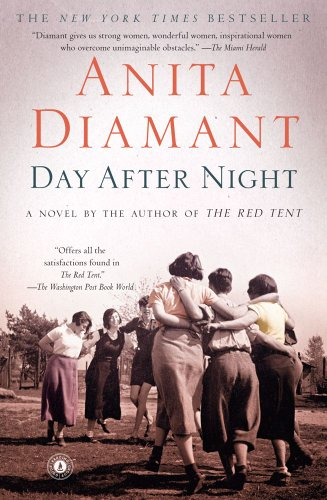 9781439197141: Day After Night: A Novel