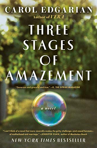 9781439198315: Three Stages of Amazement: A Novel