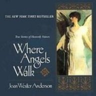 Where Angels Walk: True Stories of Heavenly Visitors (1439554676) by Joan Wester Anderson