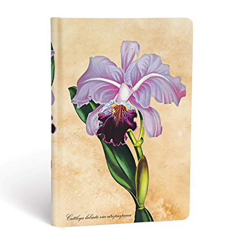 Brazilian Orchid Journal: Lined Mini (Painted Botanicals): Hartley & Marks