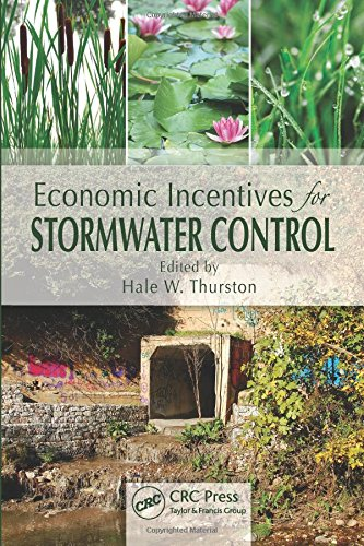 9781439845608: Economic Incentives for Stormwater Control (Ecological Economics)