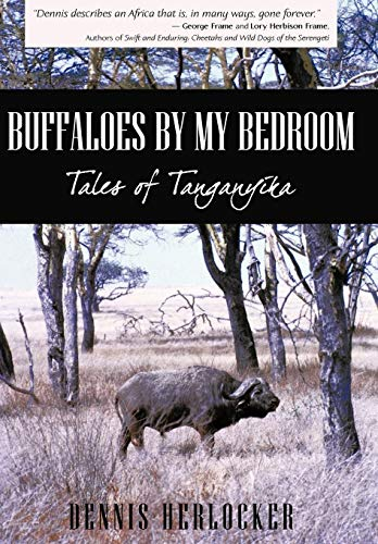 9781440147265: Buffaloes by My Bedroom