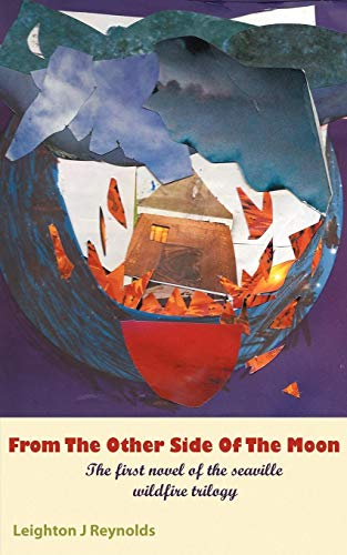 From the Other Side of the Moon: The First Novel of the Seaville Wildfire Trilogy: Leighton J. ...