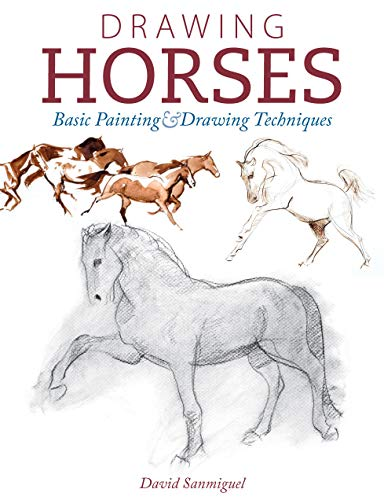 9781440341649: Drawing Horses: Basic Drawing and Painting Techniques