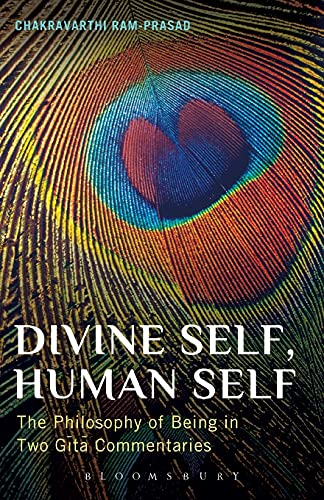 9781441154644: Divine Self, Human Self: The Philosophy of Being in Two Gita Commentaries