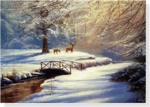9781441304636: Morning Deer Deluxe Boxed Holiday Cards (Christmas Cards, Holiday Cards, Greeting Cards)