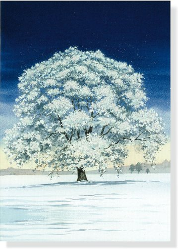 9781441304766: Mini Boxed Christmas Cards: Winter Tree