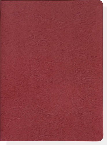 9781441306234: Moroccan Red Leather Journal (Diary, Notebook)