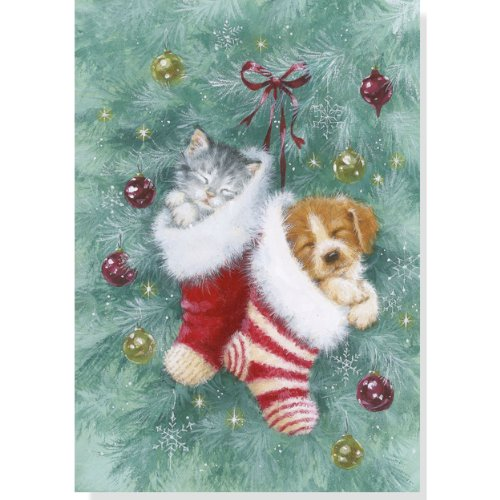 9781441307361: Stocking Pets Holiday Boxed Cards (Christmas Cards, Holiday Cards, Greeting Cards)