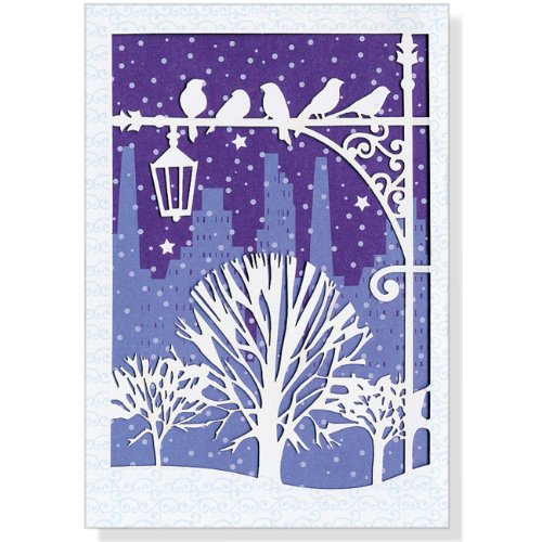 9781441311696: Mini Boxed Christmas Cards: Winter Roost Laser Cut
