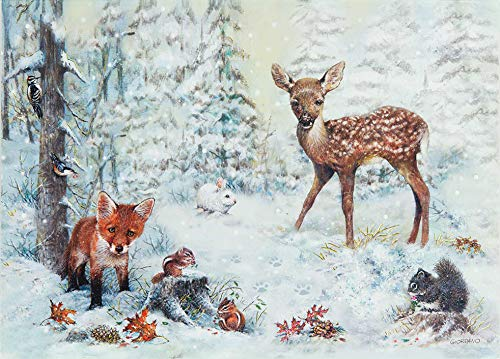 Wildlife Christmas Cards.Snowy Forest Deluxe Boxed Holiday Cards