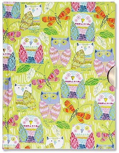 9781441320476: Owls Locking Journal (Diary, Notebook)